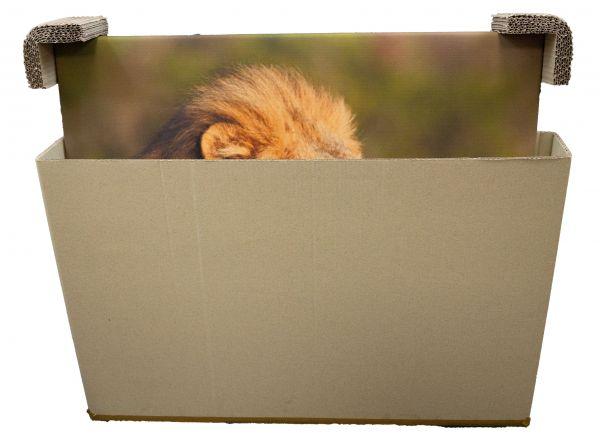 Naturebox® Teleskopverpackung 700 x 105 x 950 mm