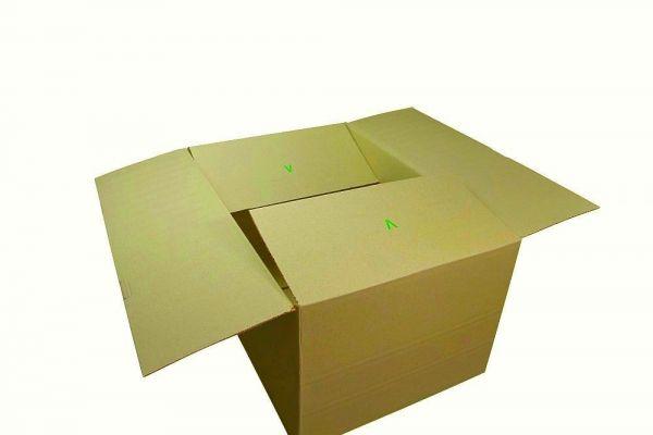 Zweiwellige Faltkartons 590 x 390 x 290 mm   Naturebox Gras Typ V